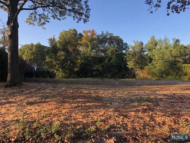 44 Carol Drive, Englewood Cliffs, NJ 07632 (#1947835) :: Proper Estates