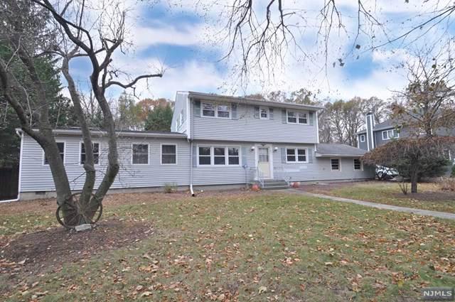 187 Birchwood Road, Old Tappan, NJ 07675 (MLS #1951717) :: William Raveis Baer & McIntosh