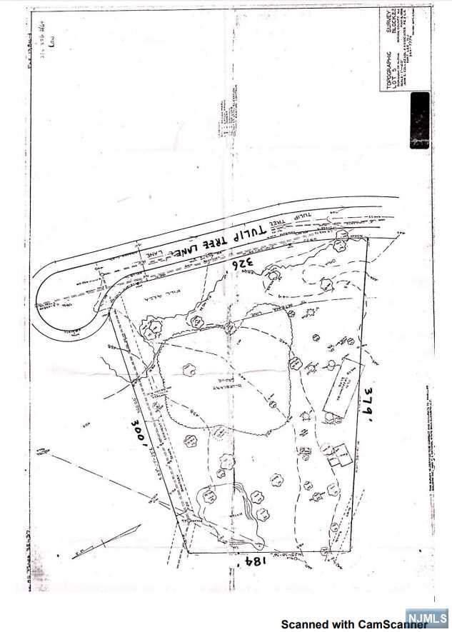 11 Tulip Tree Lane, Alpine, NJ 07620 (MLS #1953920) :: The Sikora Group