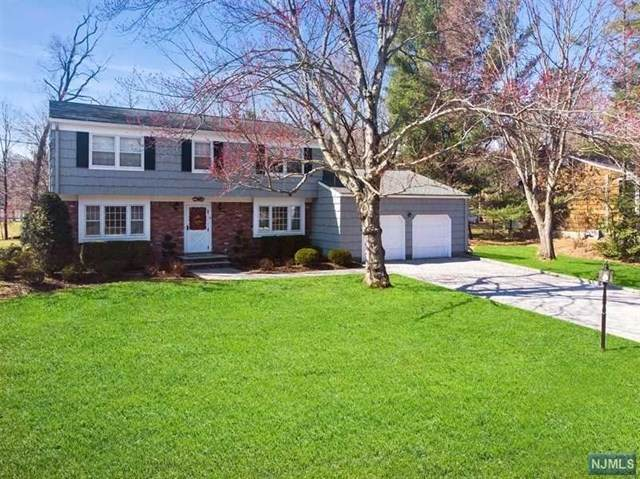 9 Brandywine Place, Oakland, NJ 07436 (MLS #20011665) :: William Raveis Baer & McIntosh
