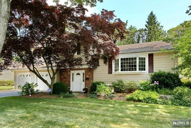 210 Alberon Drive, Park Ridge, NJ 07656 (#20025452) :: Bergen County Properties