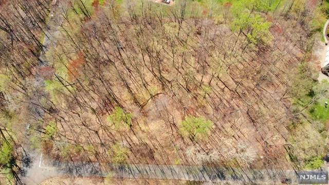 14 Eugene Drive, Saddle River, NJ 07458 (MLS #20030451) :: The Lane Team
