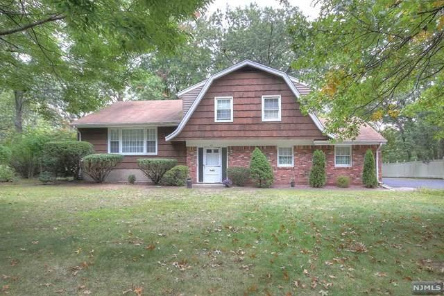 64 Gilmore Avenue, Cresskill, NJ 07626 (#20041244) :: Bergen County Properties