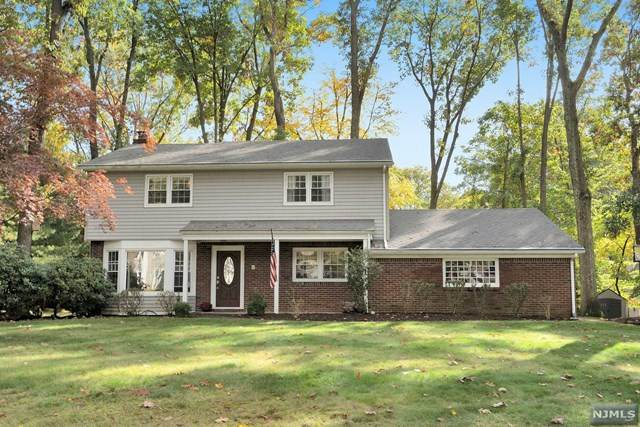 595 Colonial Road, River Vale, NJ 07675 (MLS #20044766) :: Team Braconi | Christie's International Real Estate | Northern New Jersey