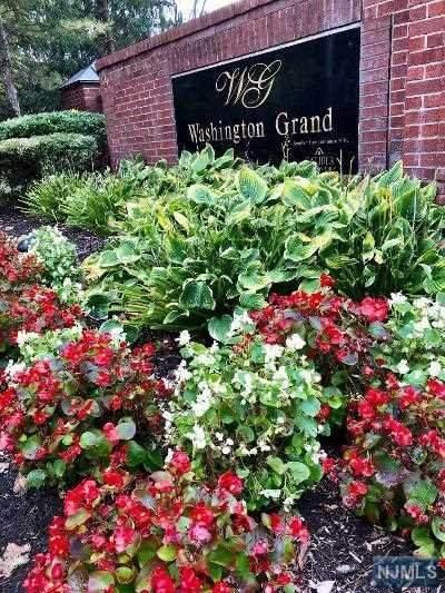 100-115 Ridgewood Road, Twp Of Washington, NJ 07676 (MLS #20047343) :: The Sikora Group