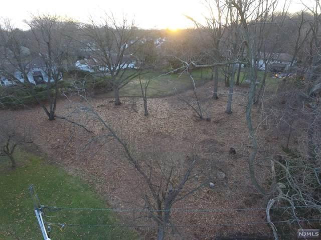 56 Sunset Court, Haworth, NJ 07641 (MLS #20047446) :: The Sikora Group