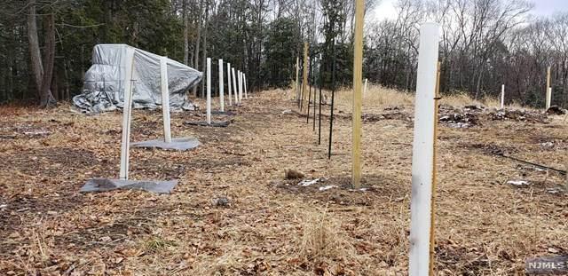 5 Hidden Hollow Terrace, Montague, NJ 07827 (MLS #20047748) :: The Sikora Group