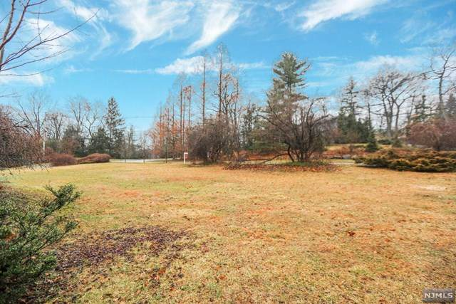 46 Allison Road, Alpine, NJ 07620 (MLS #20049808) :: William Raveis Baer & McIntosh