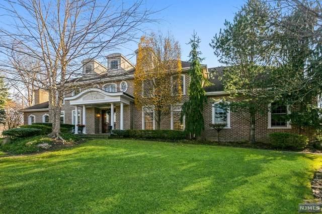 11 Susan Court, Old Tappan, NJ 07675 (MLS #20050460) :: Team Francesco/Christie's International Real Estate