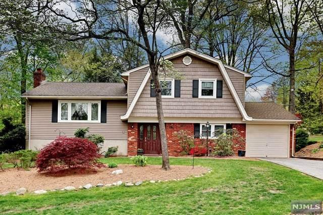 4 Jayne Terrace, Ringwood, NJ 07456 (MLS #21017005) :: Kiliszek Real Estate Experts