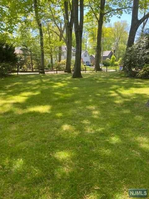 204 Hudson Avenue, Tenafly, NJ 07670 (MLS #21018260) :: Kiliszek Real Estate Experts