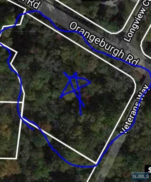 0000000 Orangeburgh Road, Old Tappan, NJ 07675 (MLS #21029328) :: Howard Hanna Rand Realty