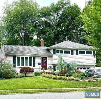 651 Pascack Road, Paramus, NJ 07652 (#21031780) :: NJJoe Group at Keller Williams Park Views Realty