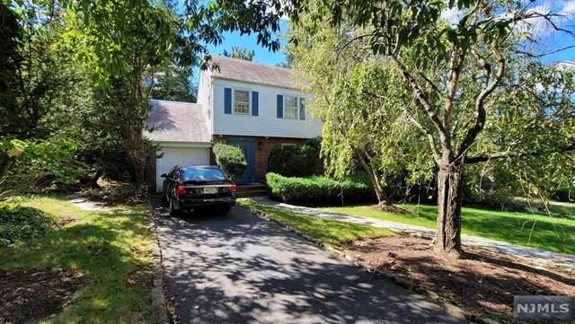 50 E Clinton Avenue, Tenafly, NJ 07670 (MLS #21039600) :: Kiliszek Real Estate Experts
