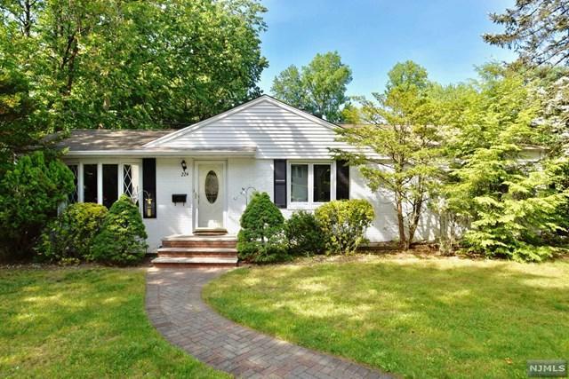 224 Van Saun Dr, River Edge, NJ 07661 (#1724959) :: RE/MAX Properties