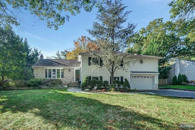 287 Beechwood Rd, Oradell, NJ 07649 (#1741826) :: RE/MAX Properties