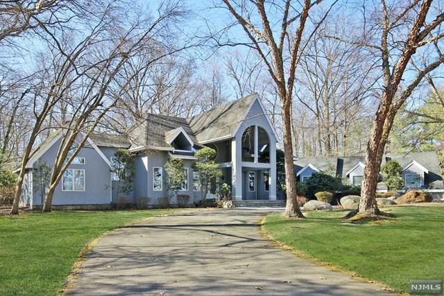 6 Little Mountain Road, Old Tappan, NJ 07675 (MLS #1809197) :: William Raveis Baer & McIntosh