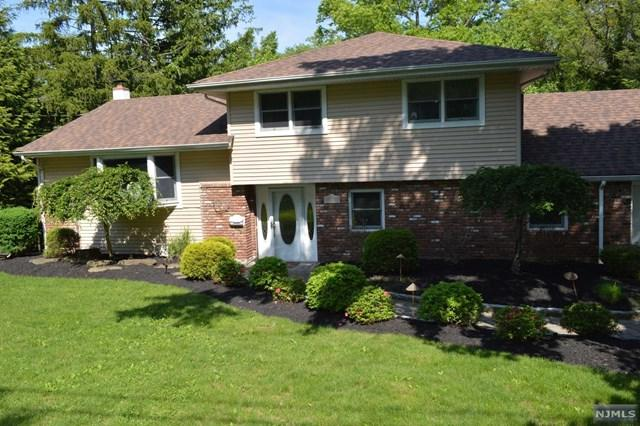 17 Stella Court, Harrington Park, NJ 07640 (MLS #1822446) :: William Raveis Baer & McIntosh