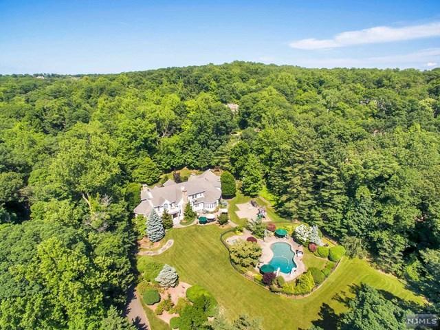 211 Highwood Avenue, Tenafly, NJ 07670 (MLS #1825117) :: The Dekanski Home Selling Team