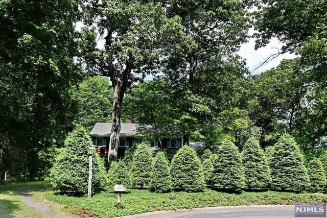 249 Mulberry Way, Franklin Lakes, NJ 07417 (MLS #1825514) :: William Raveis Baer & McIntosh