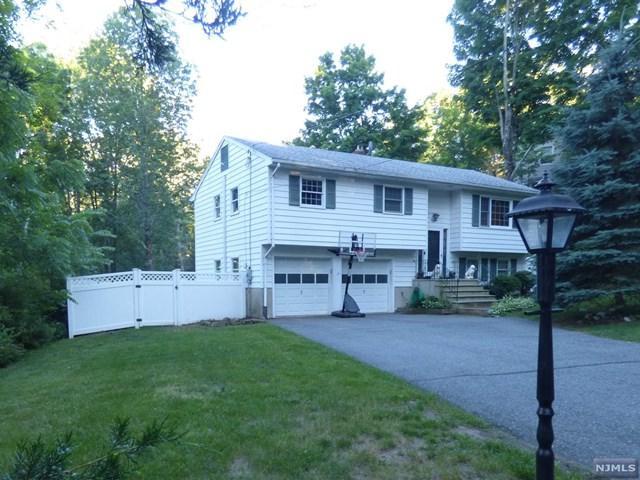 8 Hewlett Road, Montville Township, NJ 07082 (MLS #1825741) :: William Raveis Baer & McIntosh