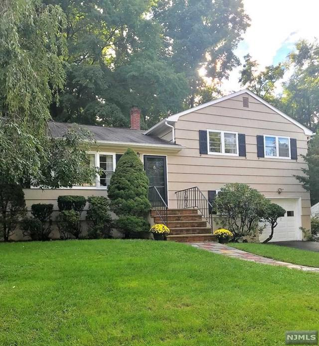 64 Park Street, West Caldwell, NJ 07006 (MLS #1839632) :: William Raveis Baer & McIntosh