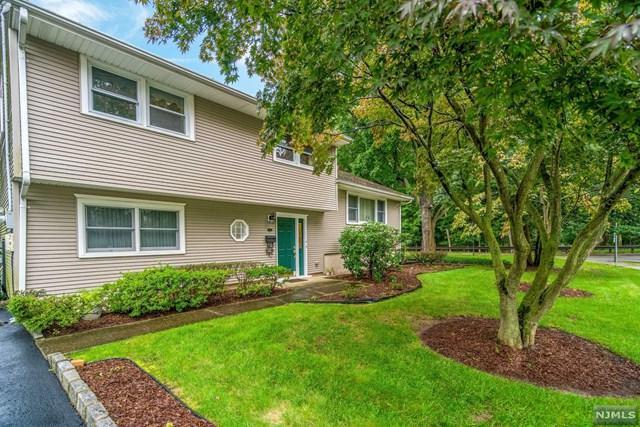 507 Cleveland Avenue, River Vale, NJ 07675 (MLS #1841422) :: William Raveis Baer & McIntosh
