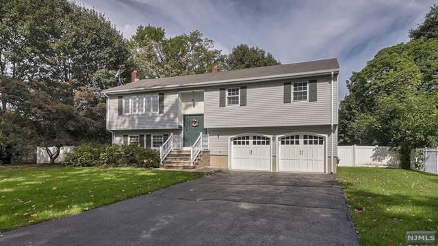 18 Franklin Avenue, Pequannock Township, NJ 07444 (MLS #1843368) :: William Raveis Baer & McIntosh