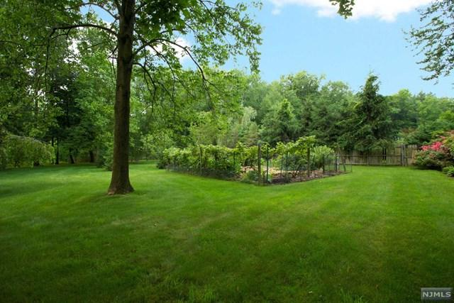 9 Fred Street, Old Tappan, NJ 07675 (MLS #1848506) :: William Raveis Baer & McIntosh