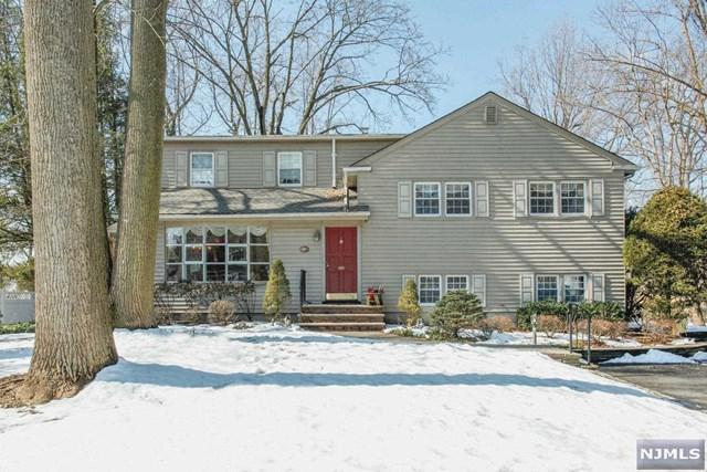647 Russell Snow Drive, River Vale, NJ 07675 (#1909315) :: Group BK