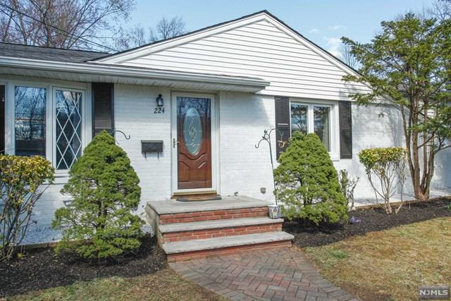 224 Van Saun Drive, River Edge, NJ 07661 (#1915829) :: Berkshire Hathaway HomeServices Abbott Realtors
