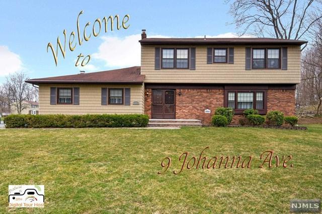 9 Johanna Avenue, Par-Troy Hills Twp., NJ 07054 (#1915925) :: Berkshire Hathaway HomeServices Abbott Realtors