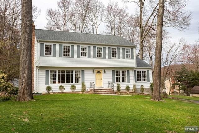 602 Delcina Drive, River Vale, NJ 07675 (#1916177) :: Berkshire Hathaway HomeServices Abbott Realtors