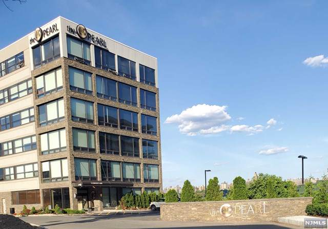 9 Somerset Lane #221, Edgewater, NJ 07020 (MLS #1951812) :: Team Francesco/Christie's International Real Estate