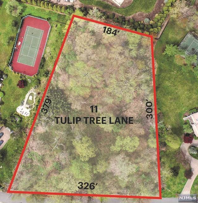 11 Tulip Tree Lane - Photo 1