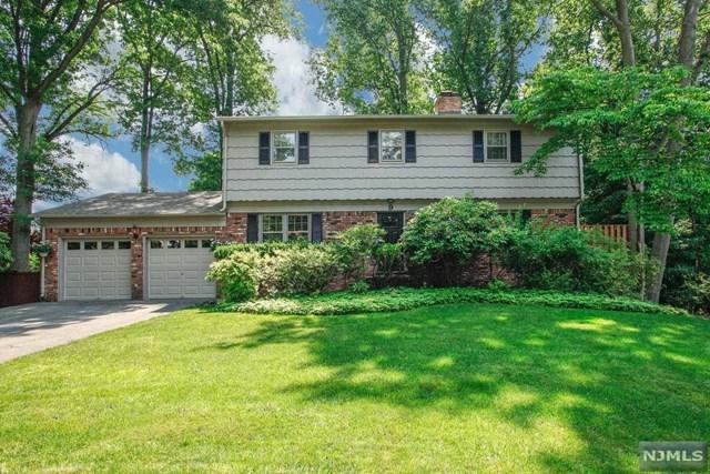 9 Avon Court, Hillsdale, NJ 07642 (MLS #1822836) :: The Dekanski Home Selling Team