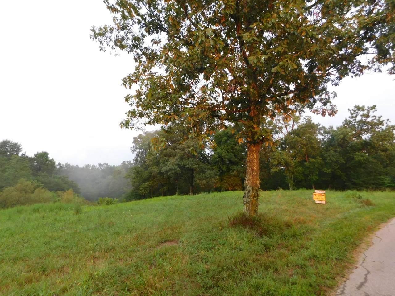 Leaning Oak Road - Photo 1