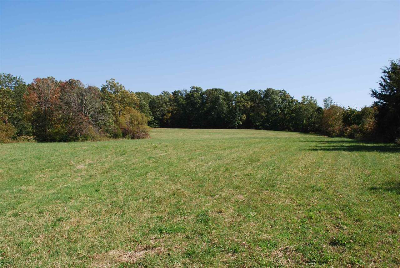 103+/- Acres Chalk Ridge Road - Photo 1