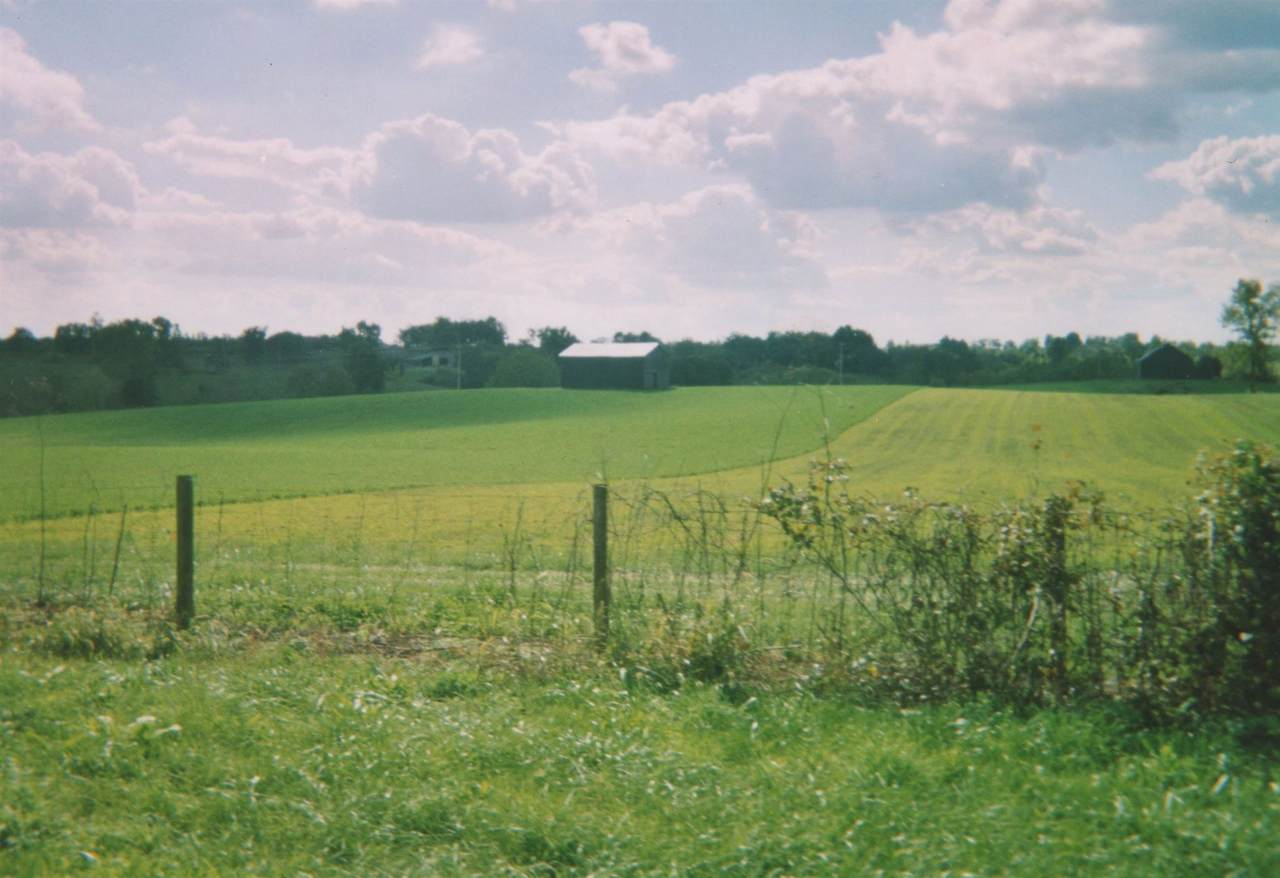 852 Ky Hwy 1032 - Photo 1