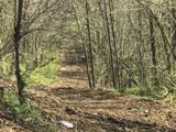 5104 Dutch Ridge Rd. - Photo 7