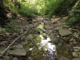 868 Doeridge - Photo 39