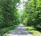 155 Acres Mason Sipple Road - Photo 18