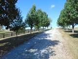 4305 Swope (House & 34.18 Acres) - Photo 34