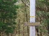 445 Elk Lake Resort Rd Lot  1536 (6.5 Acres) - Photo 15