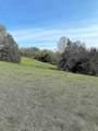 16.30 Acres Turner Road - Photo 3