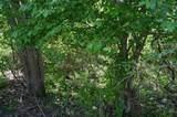 3026 Winding Trails - Photo 25
