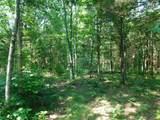 Fox Trail - Photo 10