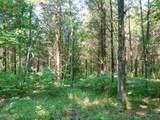 Fox Trail - Photo 11