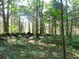Fox Trail - Photo 12