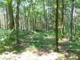 Fox Trail - Photo 13